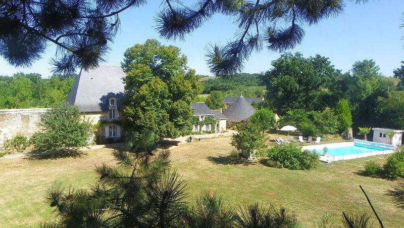Ancien château dans grand parc avec piscine privée, holiday rental in Saint-Aubin-de-Luigne