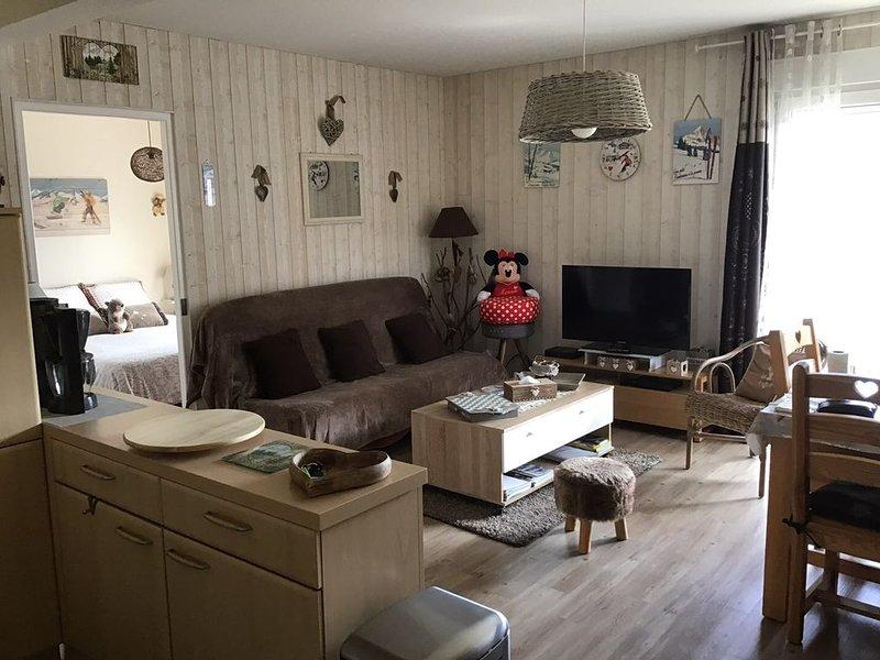 Centre ville 40 m2 classé 3 étoiles + garage dans résidence à 400 m du lac, alquiler de vacaciones en Gerardmer