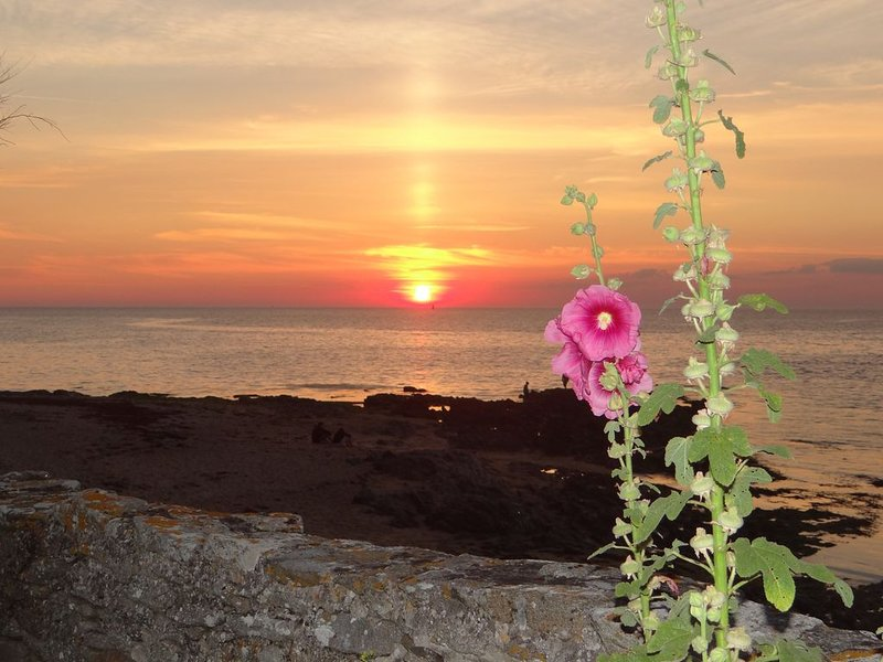 puesta de sol en la terraza