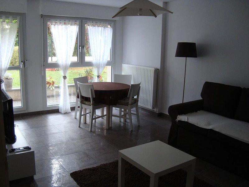 Appartement  2 pièces de 45m², très lumineux pour 4 personnes, vacation rental in Strasbourg