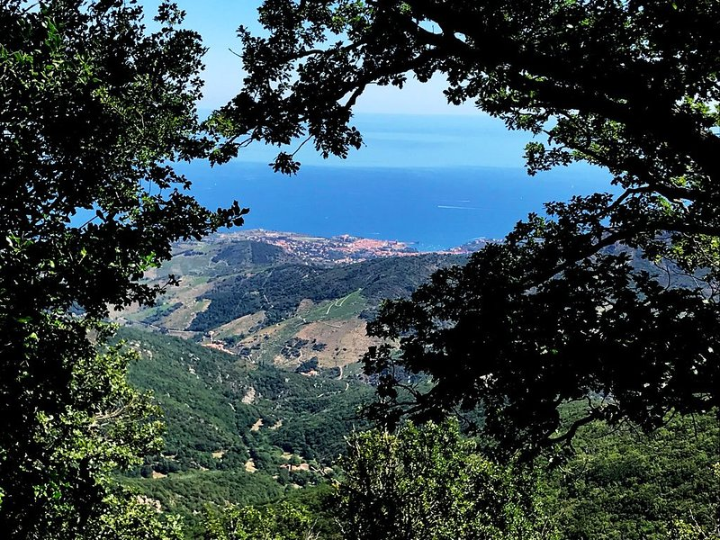 Hiking trails to the Massane Tower 3 hours from Collioure