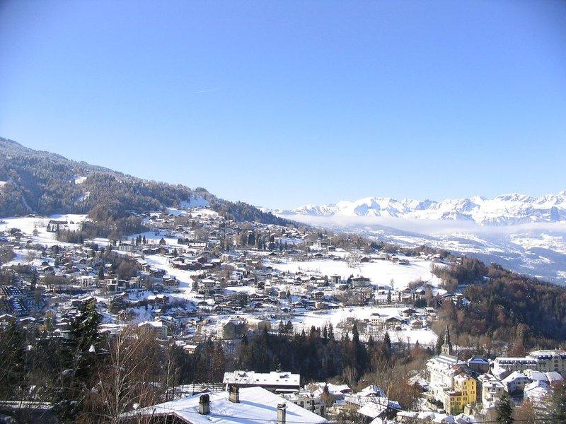 Chalet de charme, vue exceptionnelle, sauna, cheminée, 4****, location de vacances à Saint-Gervais-les-Bains