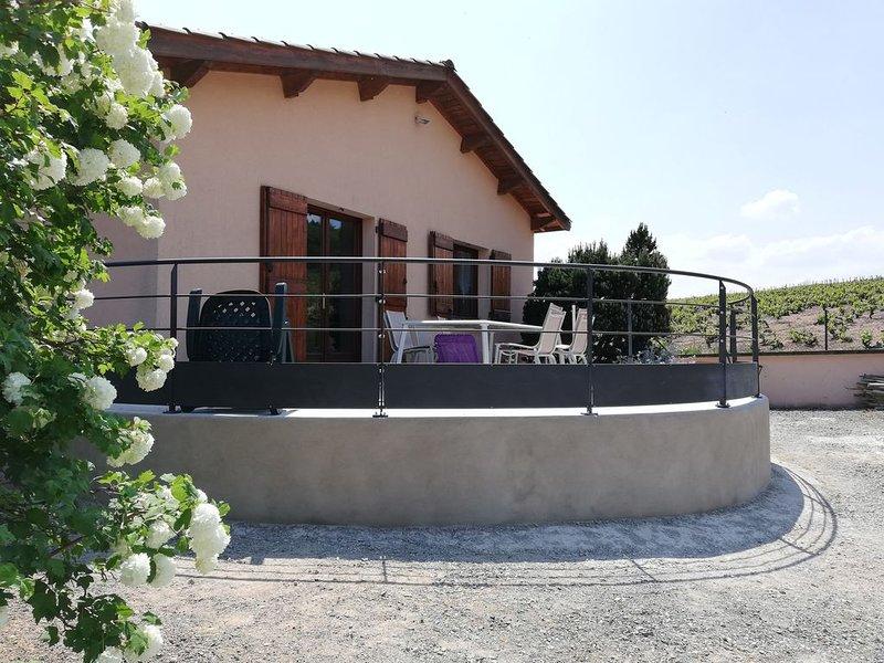 Gite 3 épis Odenas(Brouilly)  sur terrain 4200 m²  sur terrain clos et fleuri, holiday rental in Quincie-en-Beaujolais
