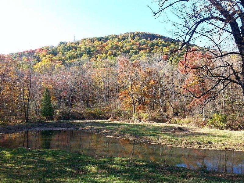 Pond /mountain view
