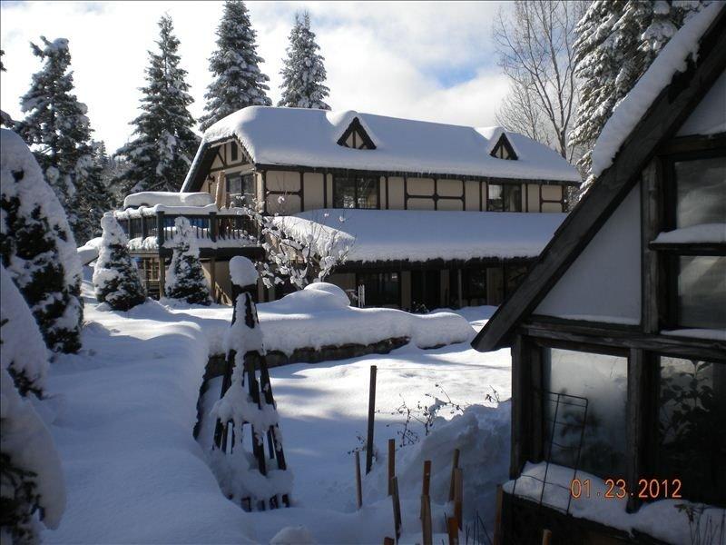 Garden Loft,  Very Private, Cov. Gar.  1 BR. 1 BA. 1 Mi to MS., vacation rental in McCloud