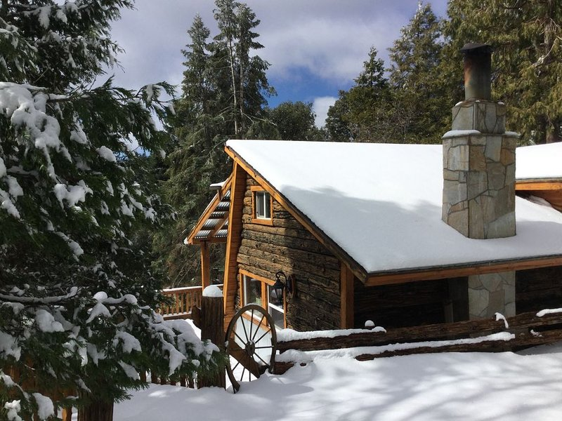 Vintage/Modern Cabin Fever!  Fun on the Mountain!, holiday rental in Palomar Mountain