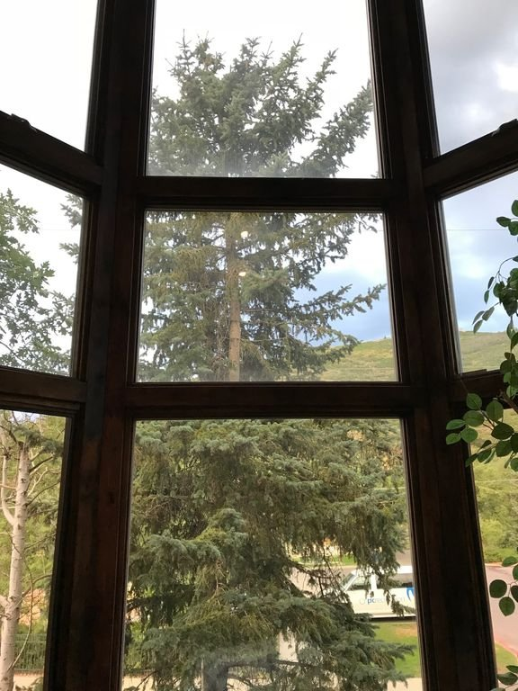 View from Living room to Outside