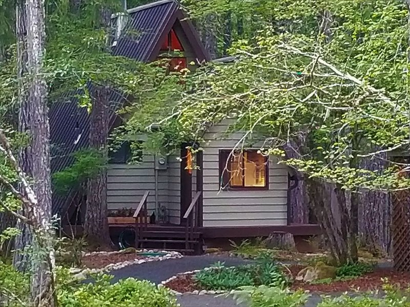 Life in the Slow Lane-The Forest Cottage at Lake Cushman, location de vacances à Potlatch