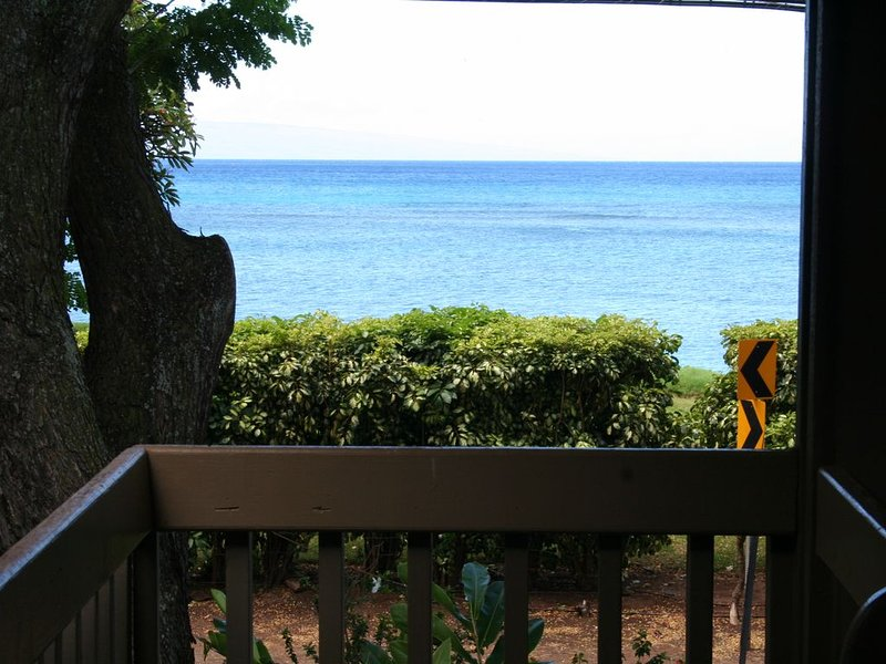 Includes Reduced Price Rejuvenate in Island Comfort - Ocean/Garden View 2 BR/1B, vacation rental in Lahaina