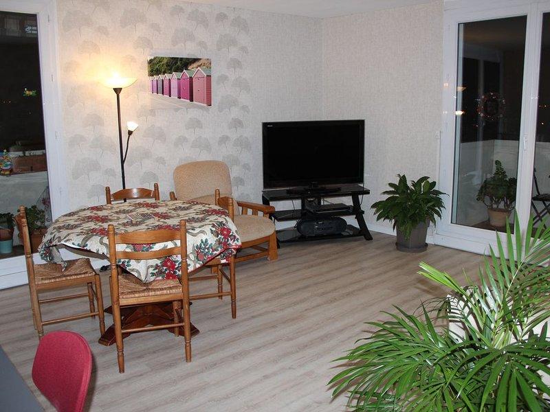 TOULOUSE CITE DE L ESPACE LOGEMENT 2 à 4 PERSONNES, holiday rental in Toulouse
