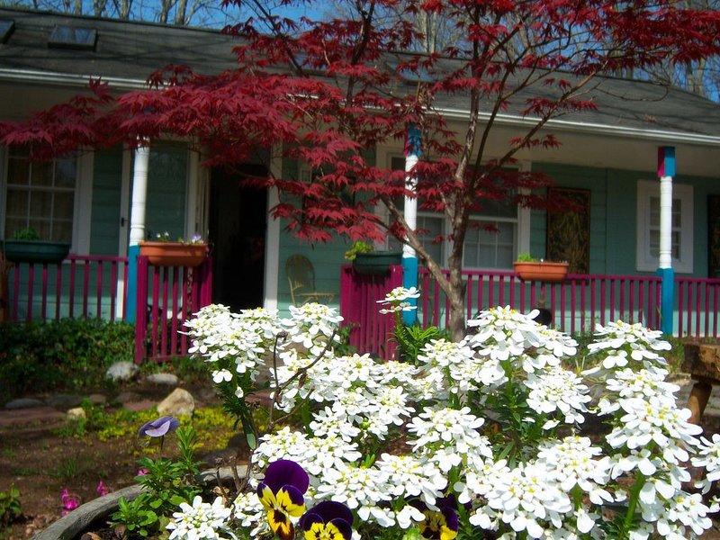 "Blue Ridge European art cottage--NO "" owner fees""!, alquiler vacacional en Black Mountain"