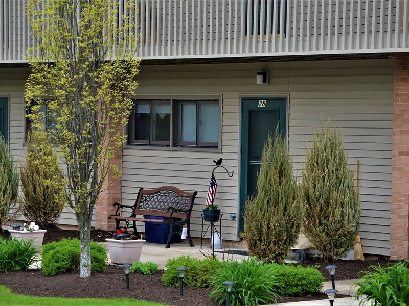 Chautauqua Lakefront Condo - Something Special For You!, holiday rental in Mayville