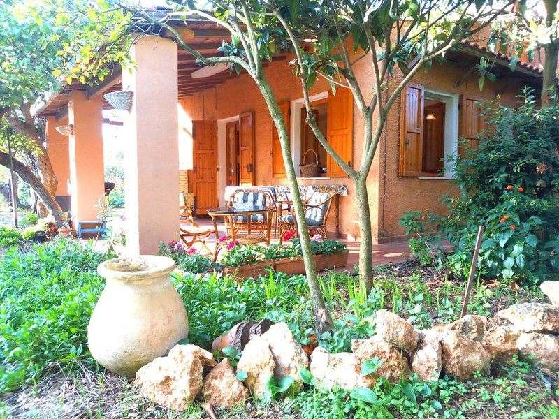 Peaceful rustic country home among olive trees, holiday rental in Platamona