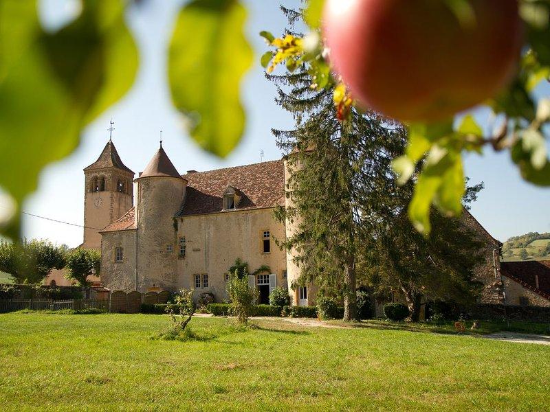 Gîte du chateau d'oyé, holiday rental in Paray Le Monial