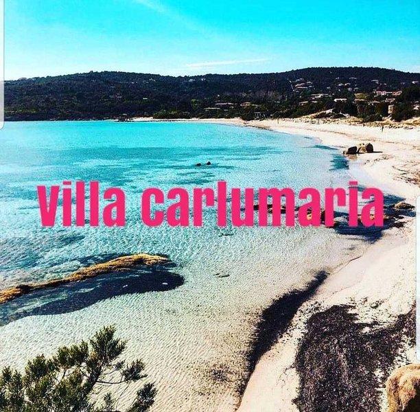 Maison avec piscine chauffée, à 5 minutes de la plage de Pinarello, casa vacanza a Zonza