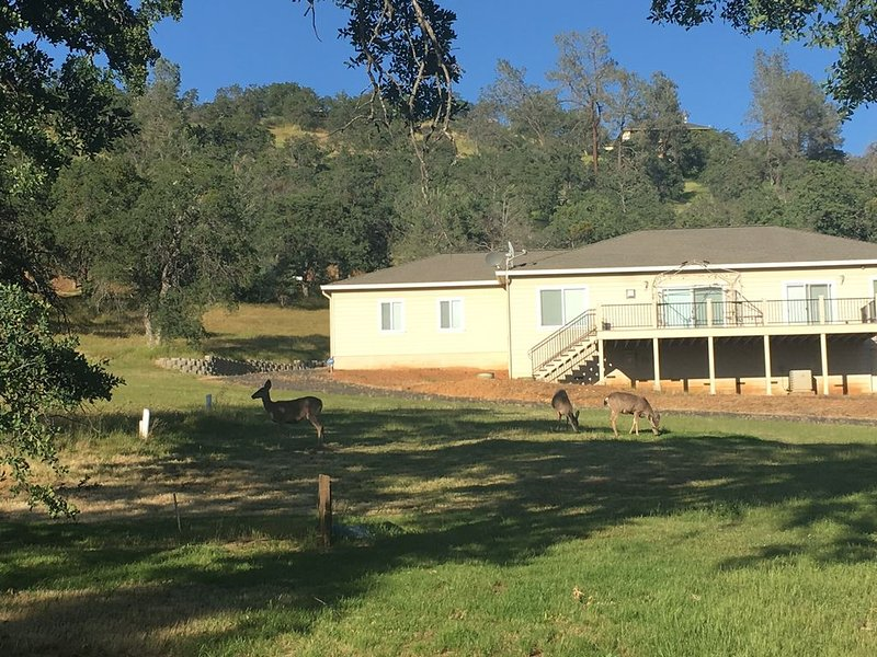 House*Lake Don Pedro & McClure with Lake Views-WiFI, holiday rental in Coulterville