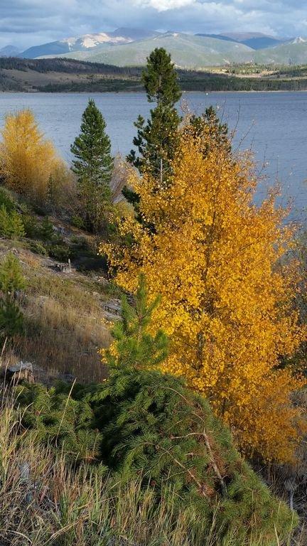 Lake Dillon fall color