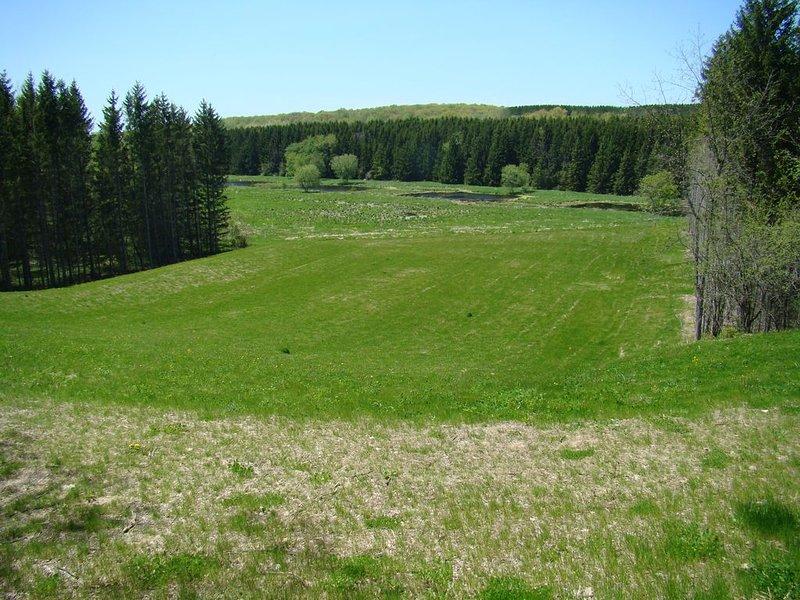 Sledding hill