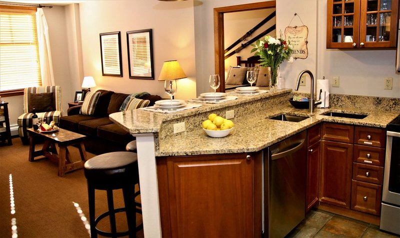 Ski in/out,2/2,hot tub,K & T/Q/T Bunk,memory foam Q couch/xbox/deck grill/sleep8, vacation rental in Winter Park
