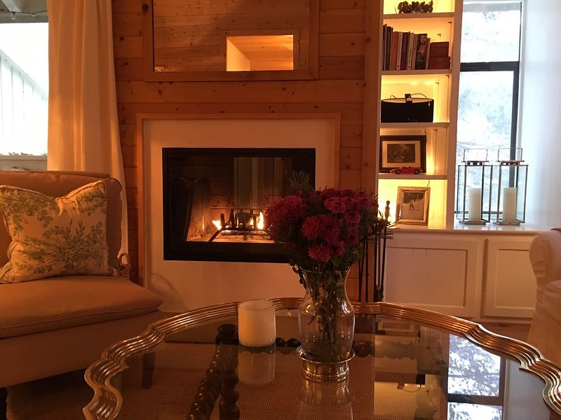 Stay IN TOWN at a cozy French Alpine Ski Chalet Right in Downtown Ketchum, holiday rental in Ketchum