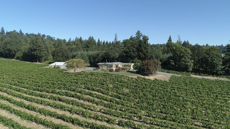Wine Country Getaway on a Working Vineyard!, holiday rental in Salem