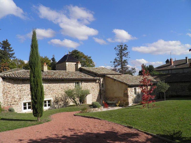 Belle maison de vigneron au coeur du Beaujolais, holiday rental in Leynes