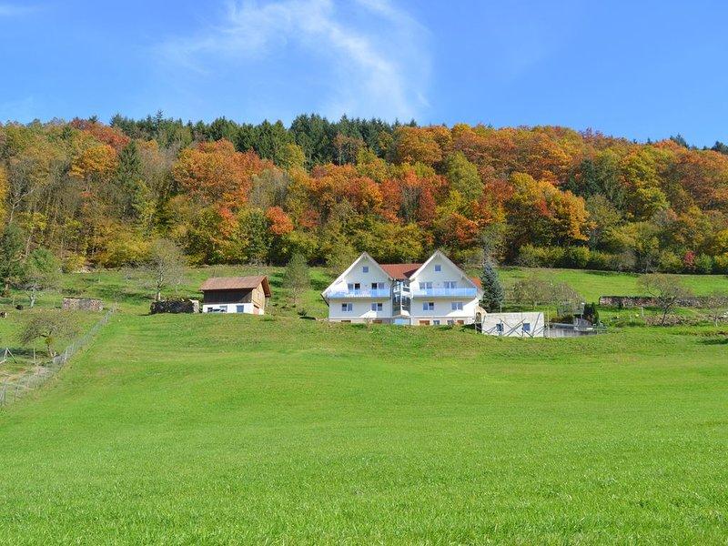 ruhige Ortsrandlage, herrliche Aussicht, modern eingerichtet, neue Gartenanlage, aluguéis de temporada em Oberharmersbach