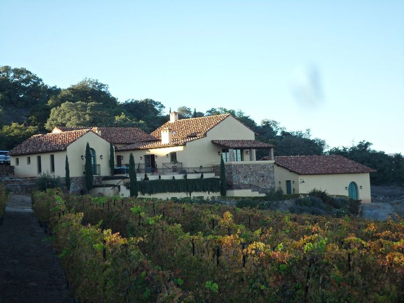 Tuscan Inspired Vineyard Estate With Panoramic Vineyard And Mountain Views, vacation rental in Lake Elsinore