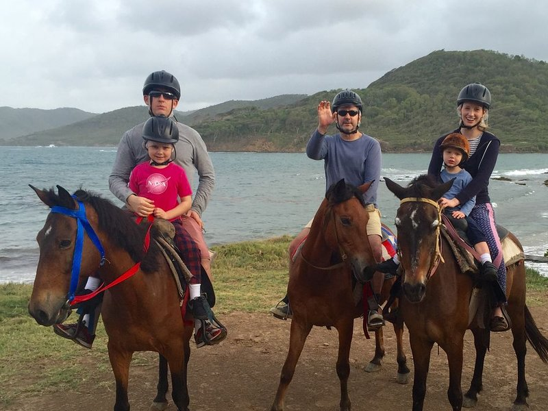 Exploring St Lucia's beaches on horseback