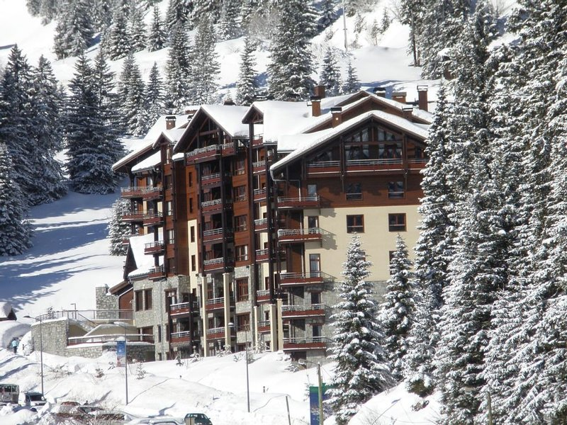 Luxury 4* ski-in ski-out apartment with pool, jacuzzi, sauna, steam room and gym, casa vacanza a Araches-la-Frasse