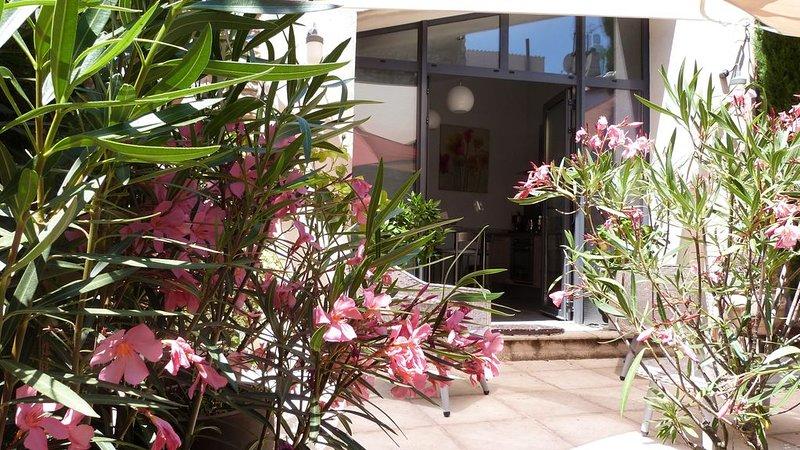 La Petite Maison, Aix en Provence,  terrasse ensoleillée et bassin, vacation rental in Peynier
