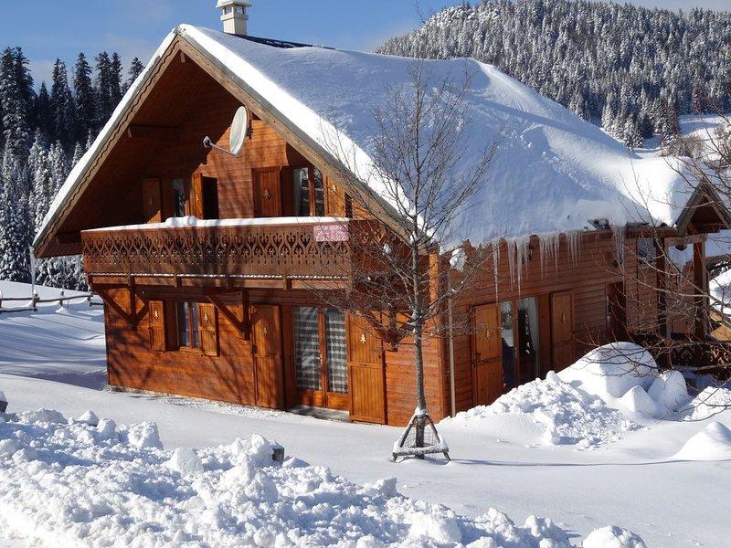 Chalet 'tradition montagne' 4 étoiles; 12 à 15 pers/ panorama, Villard de Lans, location de vacances à Saint-Julien-en-Vercors