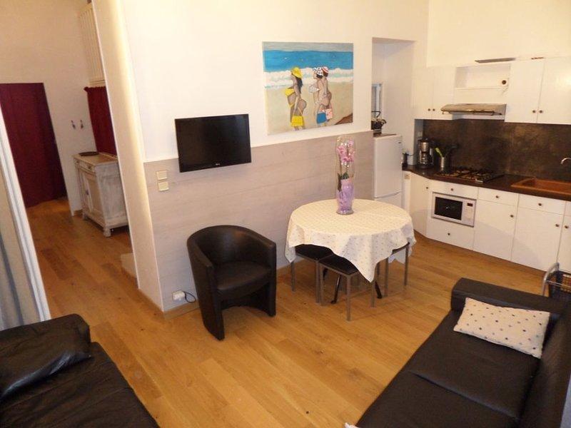 Location familiale - 5 couchages - Hyper Centre - Plage  250 M - PARK - WIFI, alquiler vacacional en Biarritz