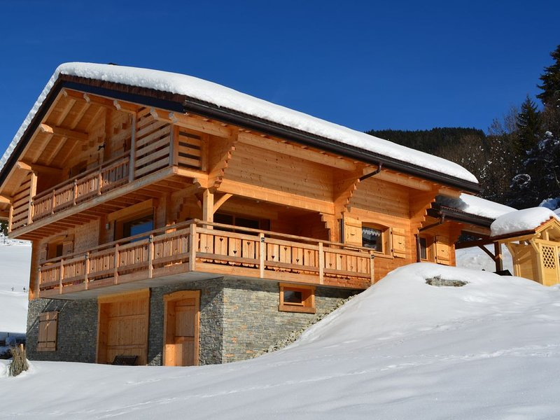 New chalet, comfortable, holiday rental in Saint-Jean-de-Sixt