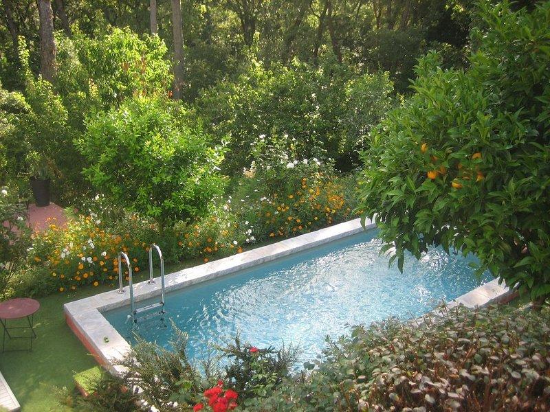 Piscine et tranquillité dans un écrin de verdure proche d'un magnifique village, location de vacances à Valbonne