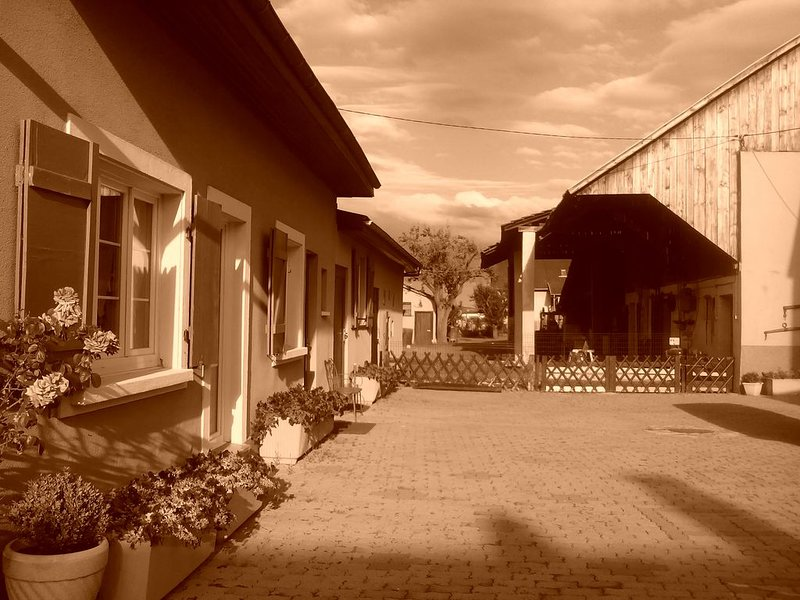 Gîte de charme à la Ferme DE LA TORRE, holiday rental in Bad Bellingen