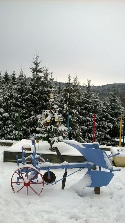 la décoration de Nôel sous la neige