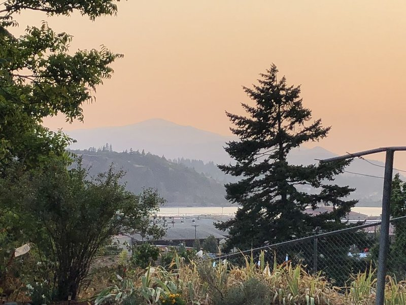 View of the River and Mount Hood in the distance