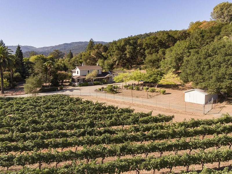 View of property from vineyard
