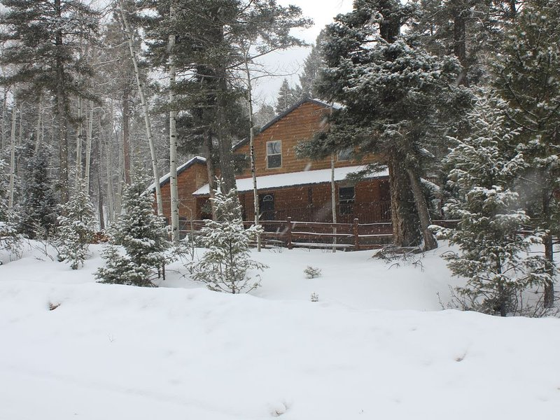 Serene setting in forest, holiday rental in Angel Fire