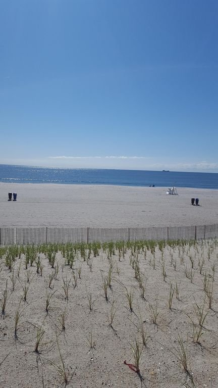 The beach with new dunes