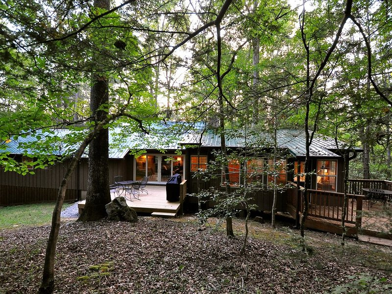 Time Well Wasted - A Mountain Woodland Retreat, holiday rental in Townsend