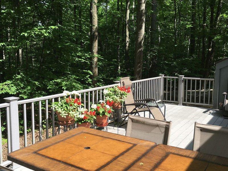 Beautiful 3 Bedroom Door County,  Heavily Wooded, Pet Friendly, NOW OFFERS WIFI, holiday rental in Gills Rock