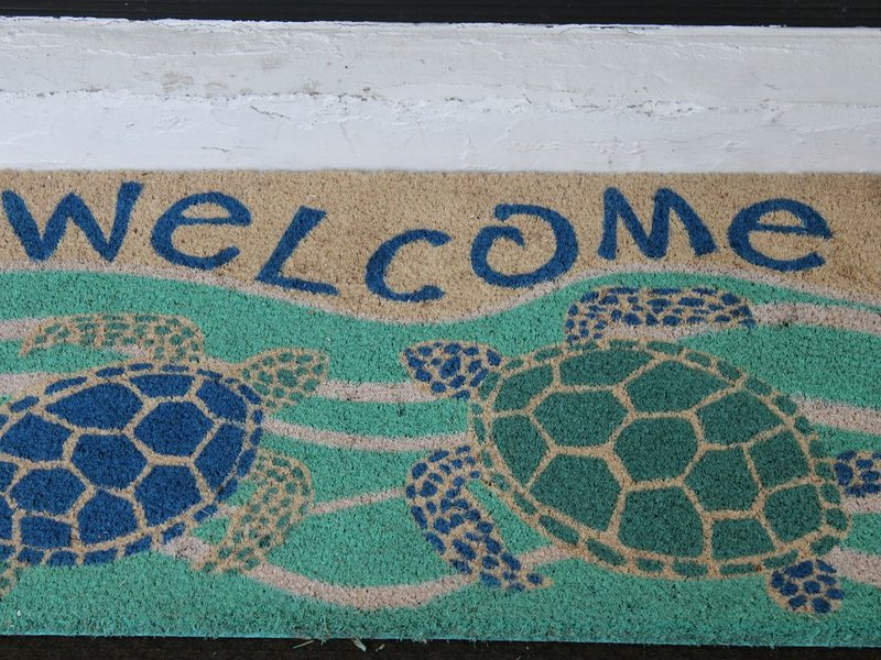 Come Enjoy Sea-renity!!!, holiday rental in Hernando Beach