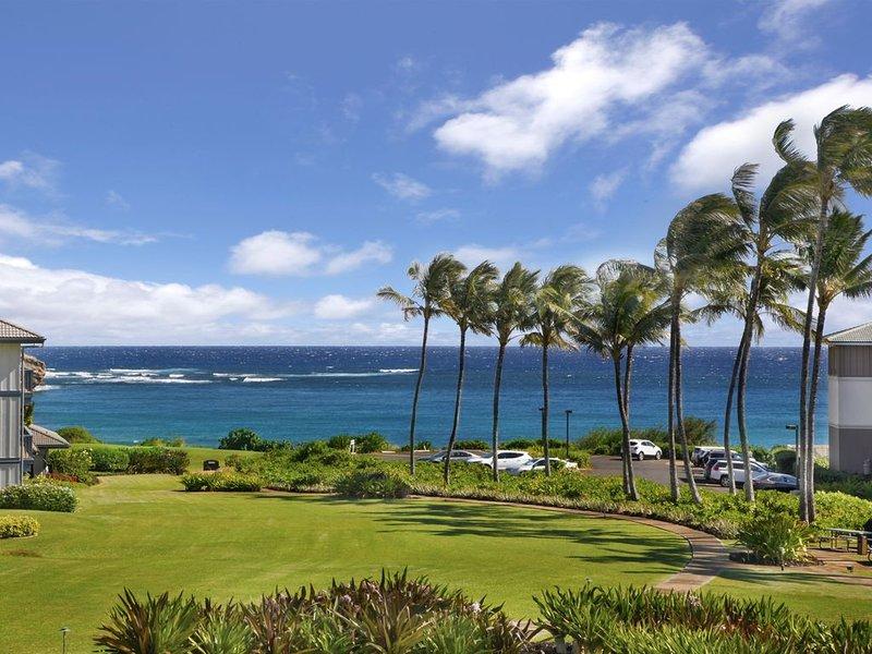 BEST OCEAN VIEW... Walk to beach and GRAND HYATT....  2020 RATES DISCOUNTED, holiday rental in Kauai