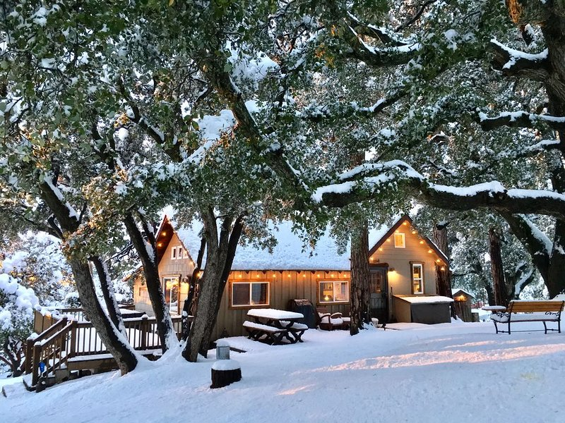 'Cozy Oaks Cabin' Peaceful Mountain Getaway, Charming & Romantic!  Trail Pass..., alquiler de vacaciones en Idyllwild
