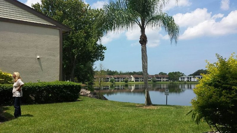 family friendly, gated community, two pools, lake outside back door., location de vacances à Oldsmar