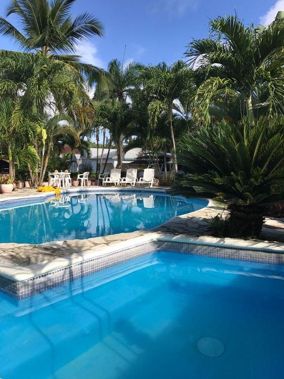 Vista del jardín privado, jacuzzi y piscina.
