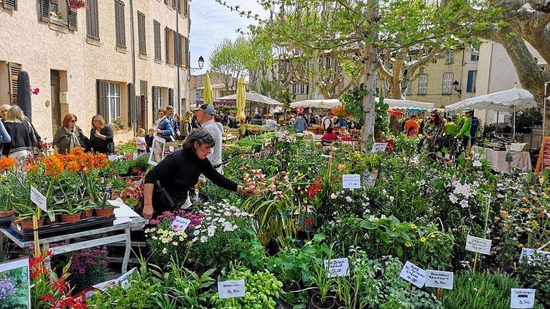 The Thursday market
