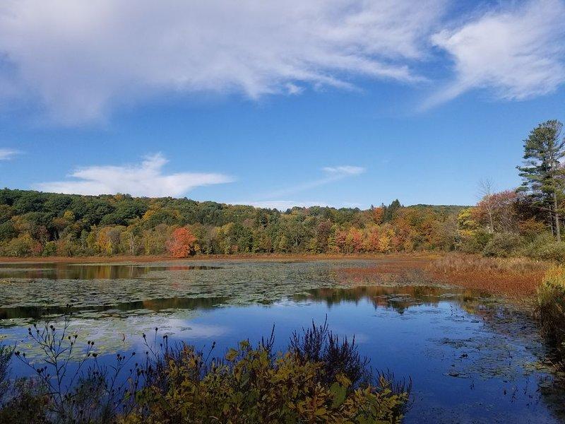 Hollister Lake